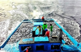 Fishermen of GA.Gemanafushi pictured at sea. PHOTO/FACEBOOK