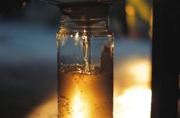 Freshly produced coconut oil strained into a jar. PHOTO/AISHATH NAJ