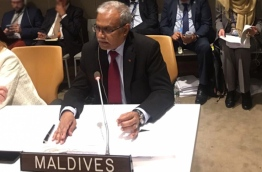 Minister of Foreign Affairs Dr Mohamed Asim