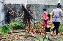 People pictured destroying mosquito breeding grounds to control an outbreak of dengue.
