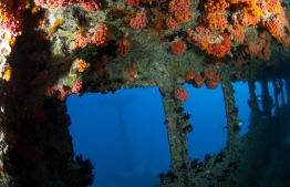 Inside the wreck of MV Victory off the coast of Hulhule. PHOTO: ADAM ASHRAF