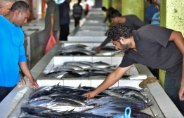 Male Fish Market, May 16, 2018: Scenes from the fish market in Male on the first day of the Islamic holy month of Ramadan. PHOTO: NISHAN ALI/MIHAARU