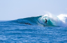Passing dolphins join in at Blue Bowls for a little friendly surf competition. PHOTO: MICKEY NATTS