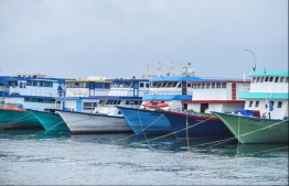 Fishing boats docked at Male City's northern harbour. PHOTO/MIHAARU