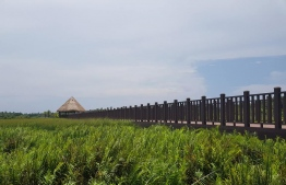 A pier extending out to the lake in one of the nature parks in Fuvahmulah. PHOTO/SIPPE