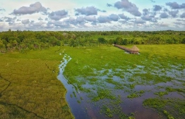 Aerial view of the nature park in Fuvahmulah. PHOTO/SIPPE