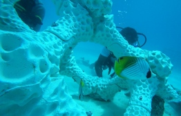 3D Printed Reefs in Summer Island Resort