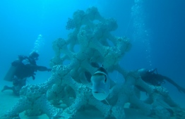 Structures built underwater using 3D printing technology for growing corals and building artificial reefs. PHOTO: SUMMER ISLAND RESORT