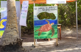 September 1, 2018, L. Maabaidhoo: Blue Marine Foundation's stall, advocating to conserve seagrass meadows for turtles, at the Laamu Turtle Festival 2018. PHOTO: HAWWA AMAANY ABDULLA / THE EDITION
