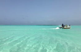 Locals speeding away with illegally obtained white sand from Farukolhu, Shaviyani Atoll. PHOTO: AMINATH NAZRA / THE EDITION