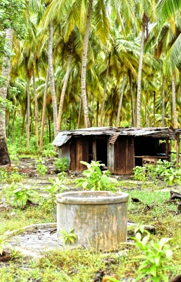 Abandoned huts and wells in the island of Baresdhoo in Laamu Atoll. PHOTO: HAWWA AMANY ABDULLA / THE EDITION