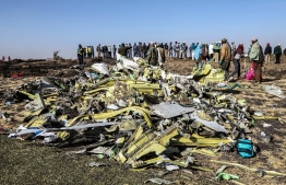 People stand near collected debris at the crash site of Ethiopia Airlines near Bishoftu, a town some 60 kilometres southeast of Addis Ababa, Ethiopia, on March 11, 2019. An Ethiopian Airlines Boeing 737 crashed on March 10 morning en route from Addis Ababa to Nairobi with 149 passengers and eight crew believed to be on board, Ethiopian Airlines said. Michael TEWELDE / AFP