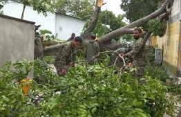 Military personnel clearing up trees that were uprooted in strong winds due to bad weather conditions. PHOTO: MNDF