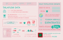 Statistics on Thilafushi. IMAGE: JAUNA NAFIZ / THE EDITION