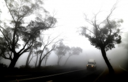 "A car makes its way through thick fog mixed with bushfire smoke in the Ruined Castle area of the Blue Mountains, some 75 kilometres from Sydney, on January 11, 2020. - Massive bushfires in southeastern Australia have a ""long way to go"", authorities have warned, even as colder conditions brought some relief to exhausted firefighter and communities. (Photo by SAEED KHAN / AFP)"